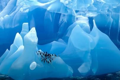 Scotia Sea, Antarctica