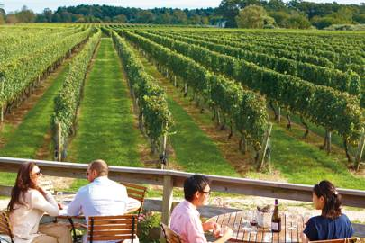 Where to drink in North Fork