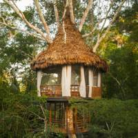 Treehouse Lodge, Peru