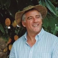 Organic cocoa farm