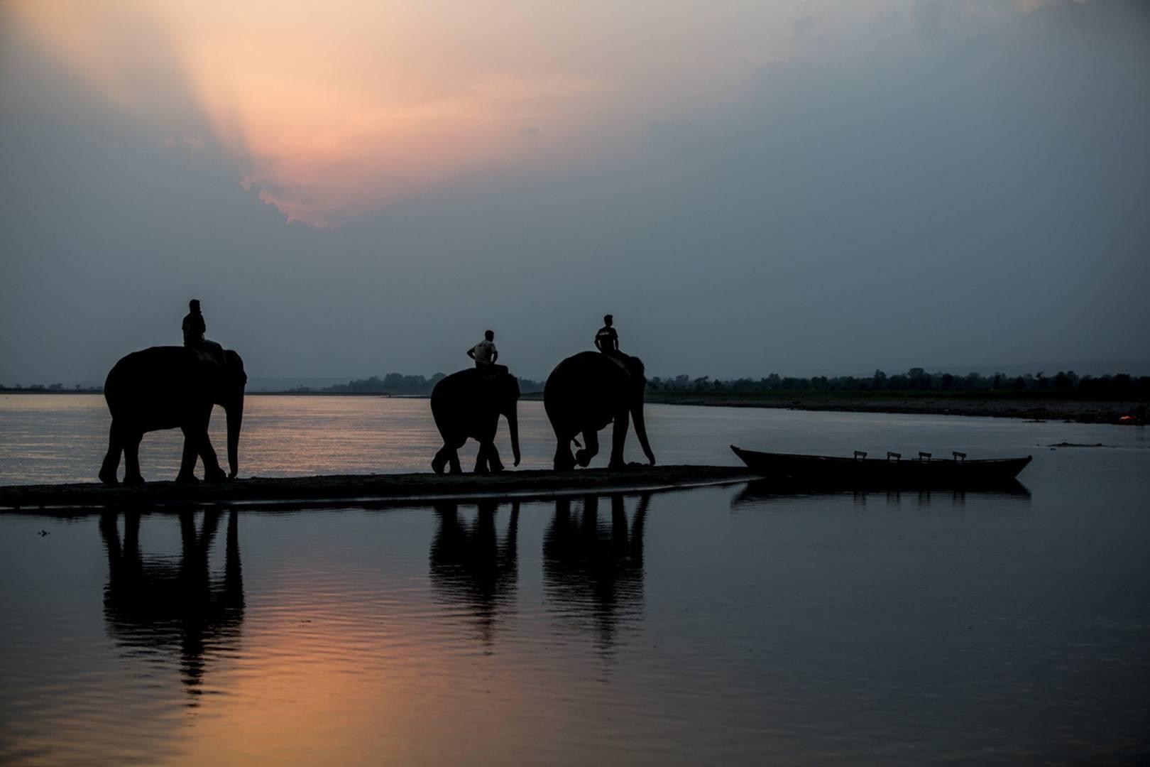 On safari in Nepal: Chitwan National Park