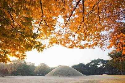 Silla tombs in Gyeongju
