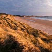 Northumberland beach walks