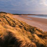 Northumberland beach walks