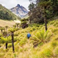 Papua New Guinea's Mount Giluwe