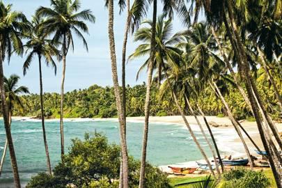 Take it easy in Sri Lanka