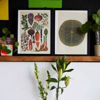 Plant Hub, Hackney