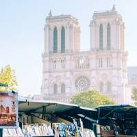 Notre-Dame and Left Bank bookstalls
