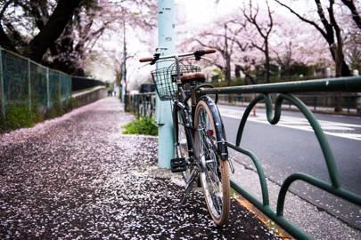 19. Tokyo