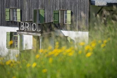 Briol, South Tyrol