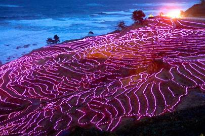 Rice paddies of Wajima, Japan