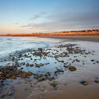 Suffolk beach walks
